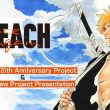 bleach anniversary project